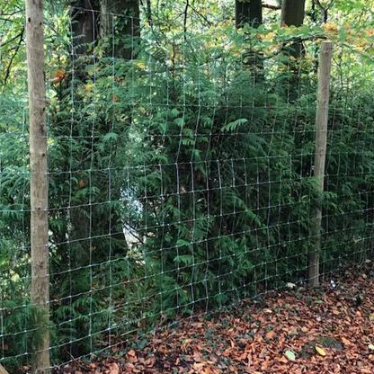 Deer fencing we installed for a wildlife park.